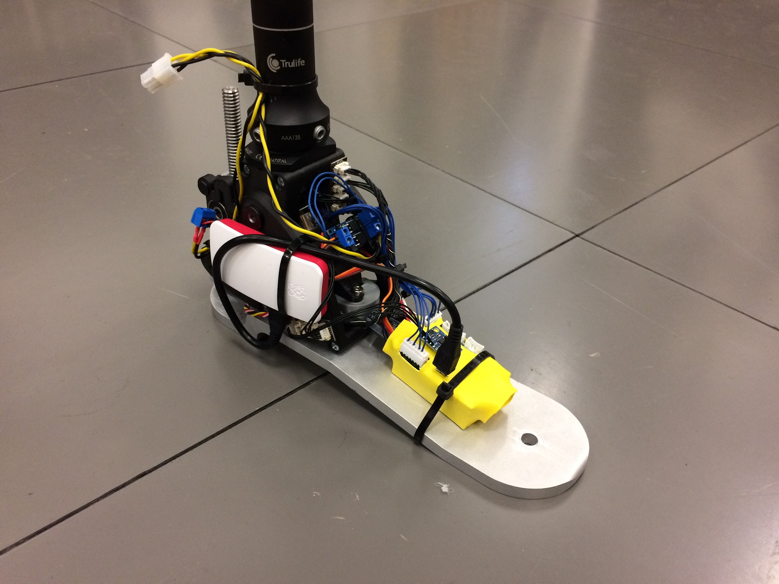 Ankle prosthesis  with locking mechanism
