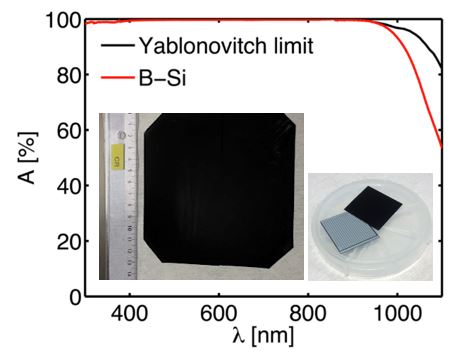High-performance passivated Black Silicon - LTTO